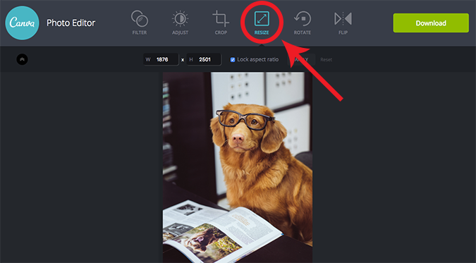 Canva photo editor resize | Bright Bite: How to Edit Photos Online for Your Website | Brighter Vision | Therapist Websites & Marketing Solutions